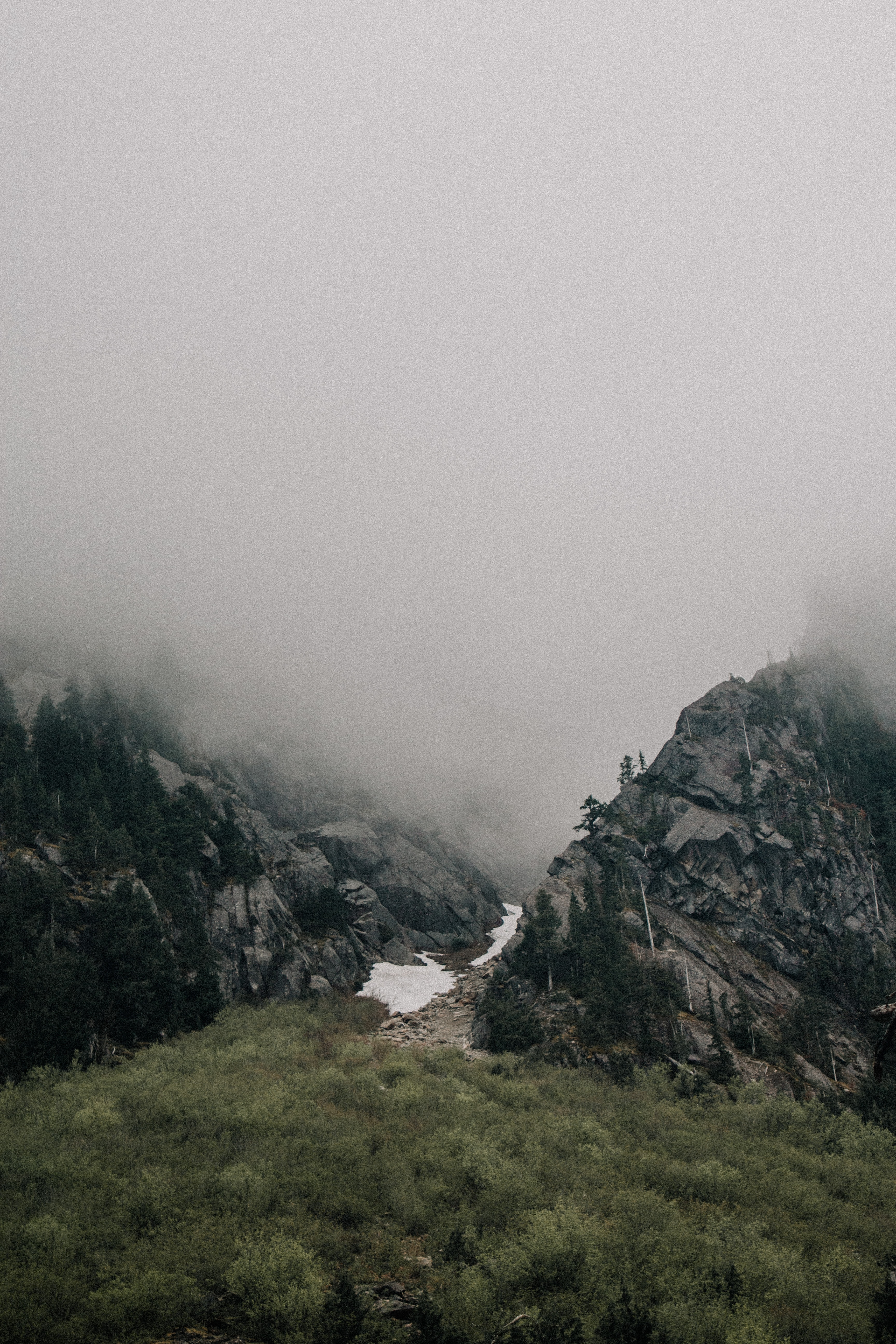 aerial photo of mountain beside trees and mist