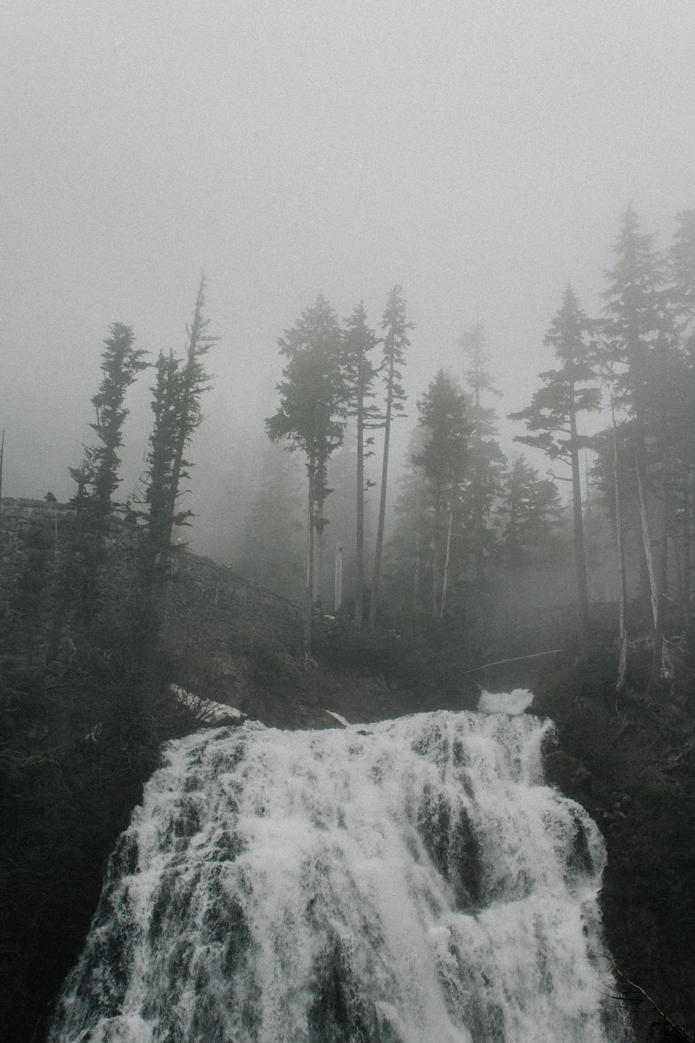 grayscale photo of waterfall near tree