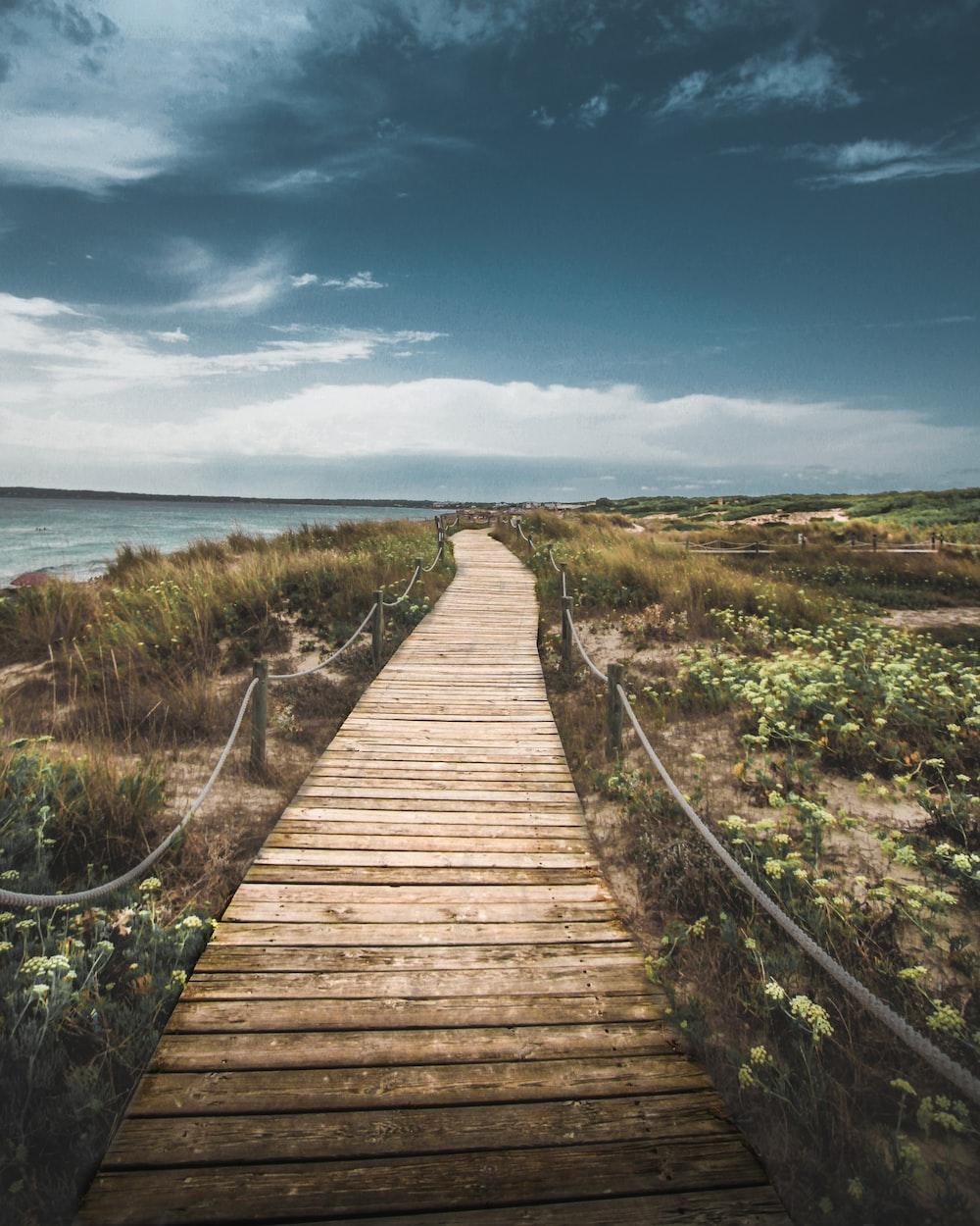 wooden pathway through seashore