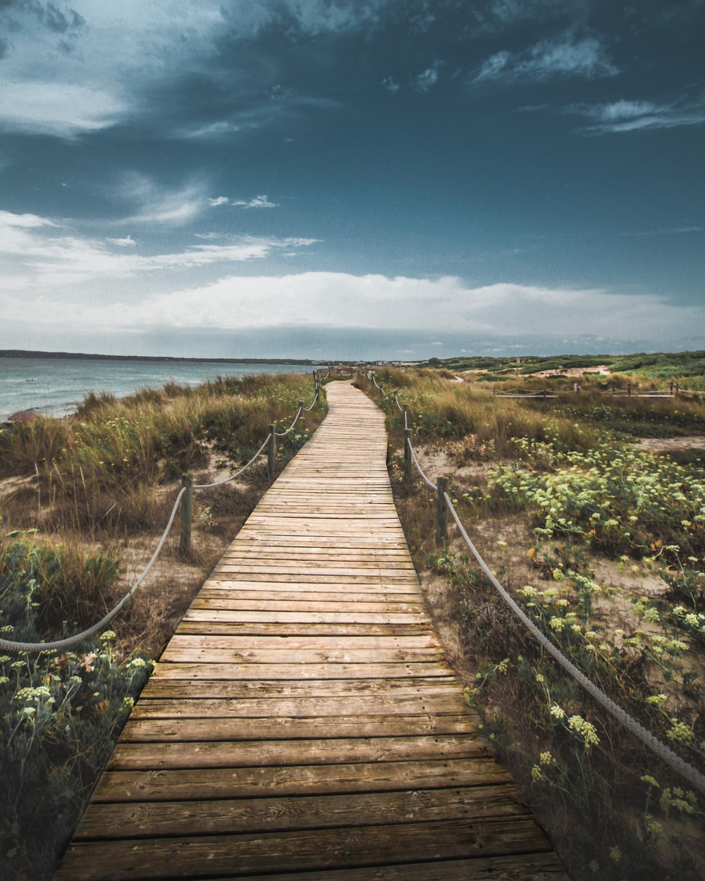 wooden pathway through seashore