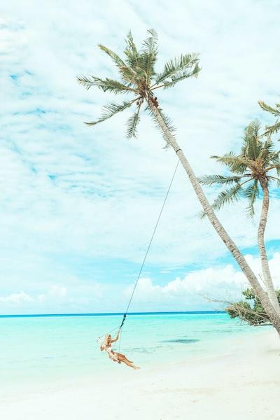 woman swing under coconut tree