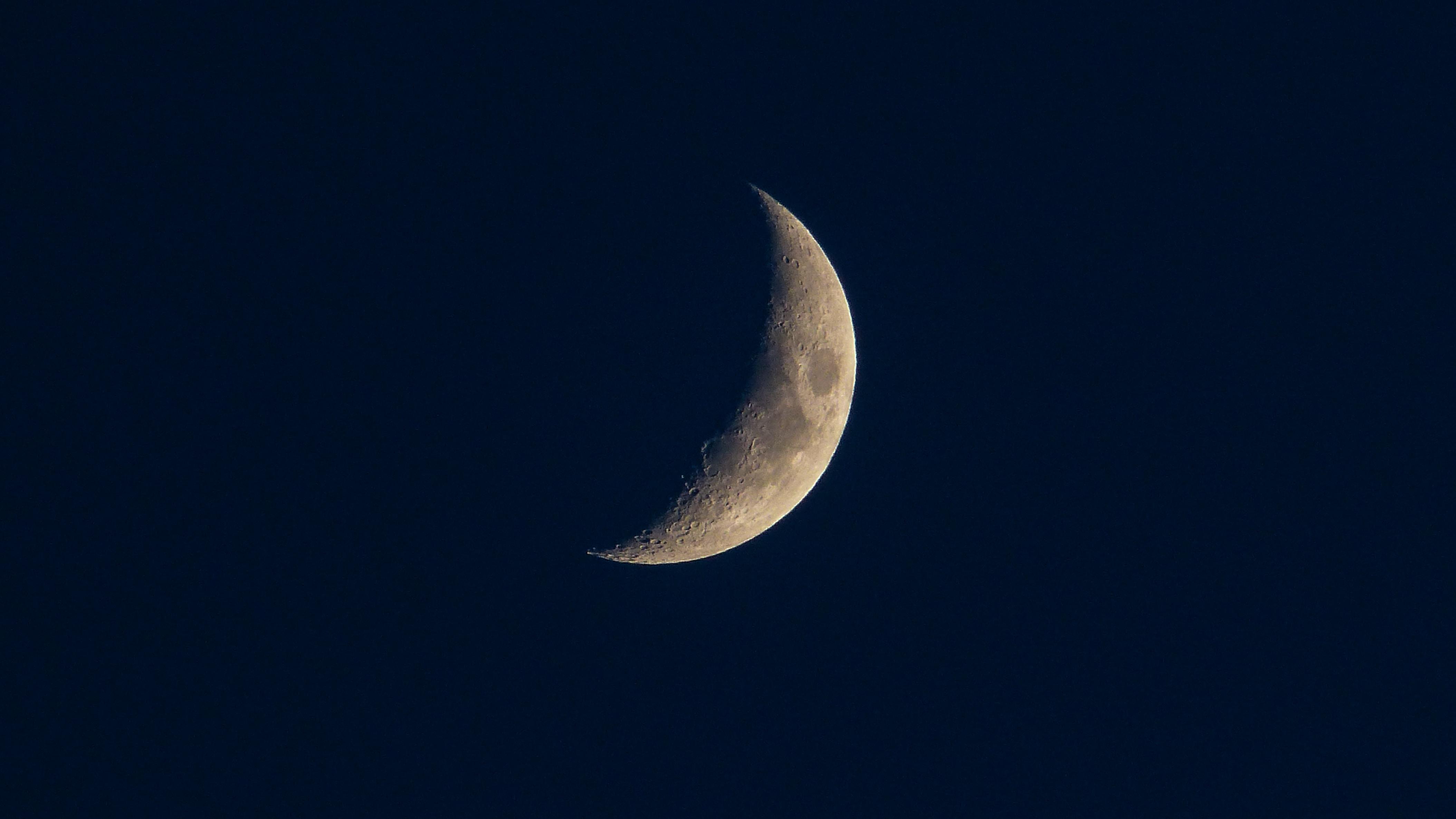 gray half moon