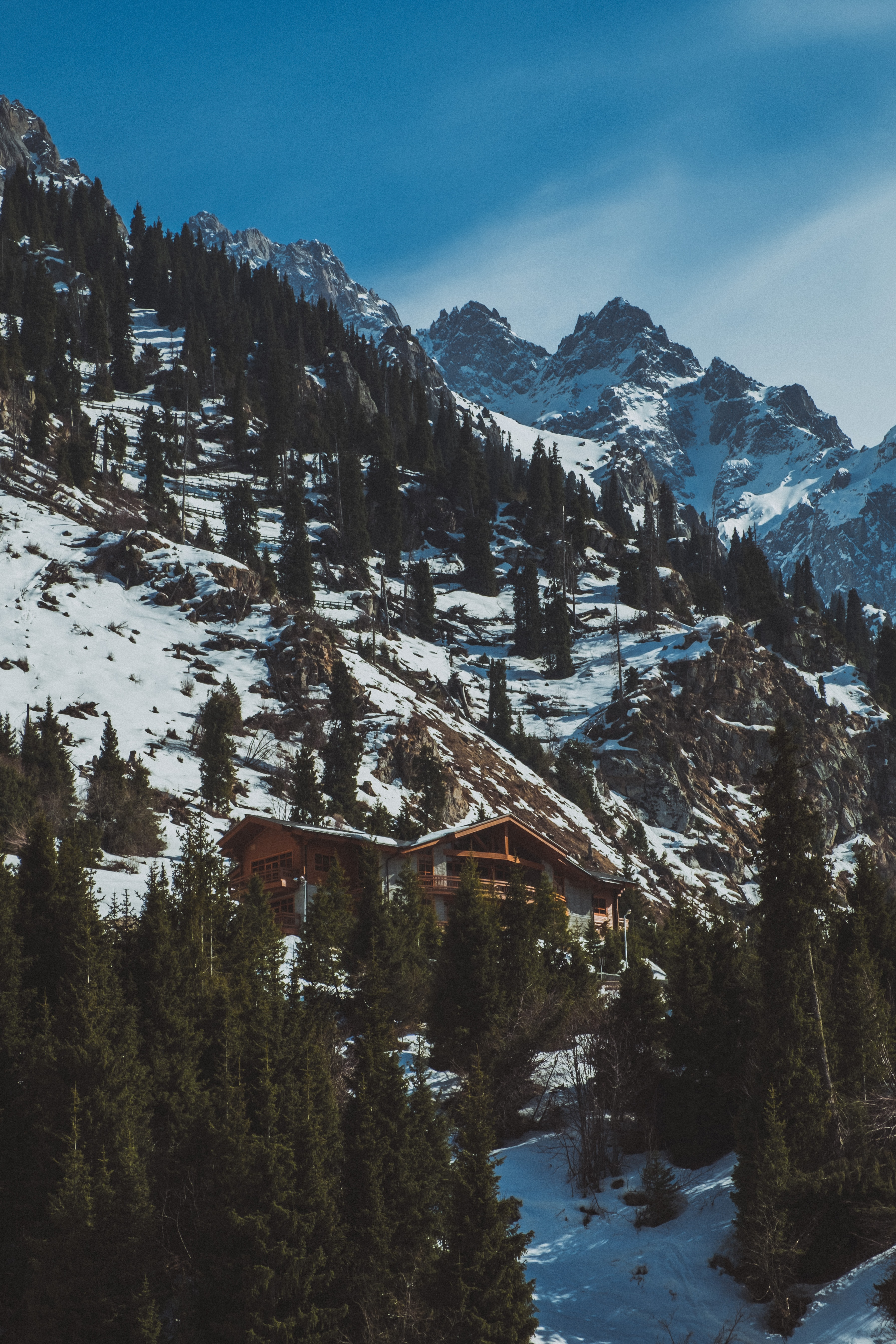 cabin near trees and glacier mountains during day