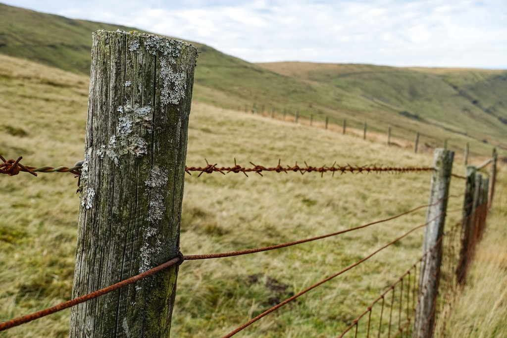 tilt shift lens photography of brown barbwire