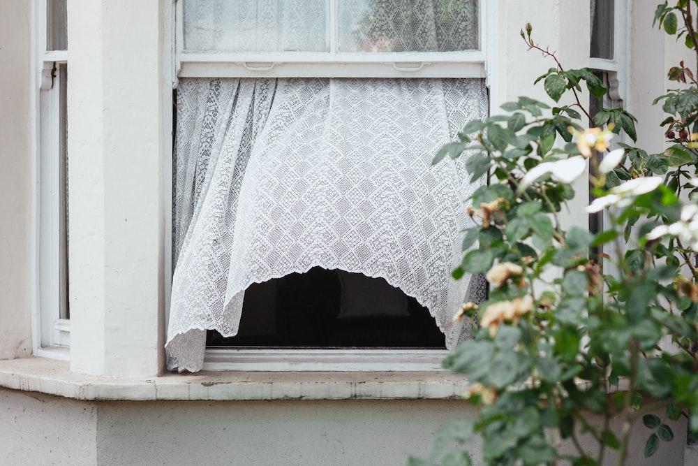white sash window opened