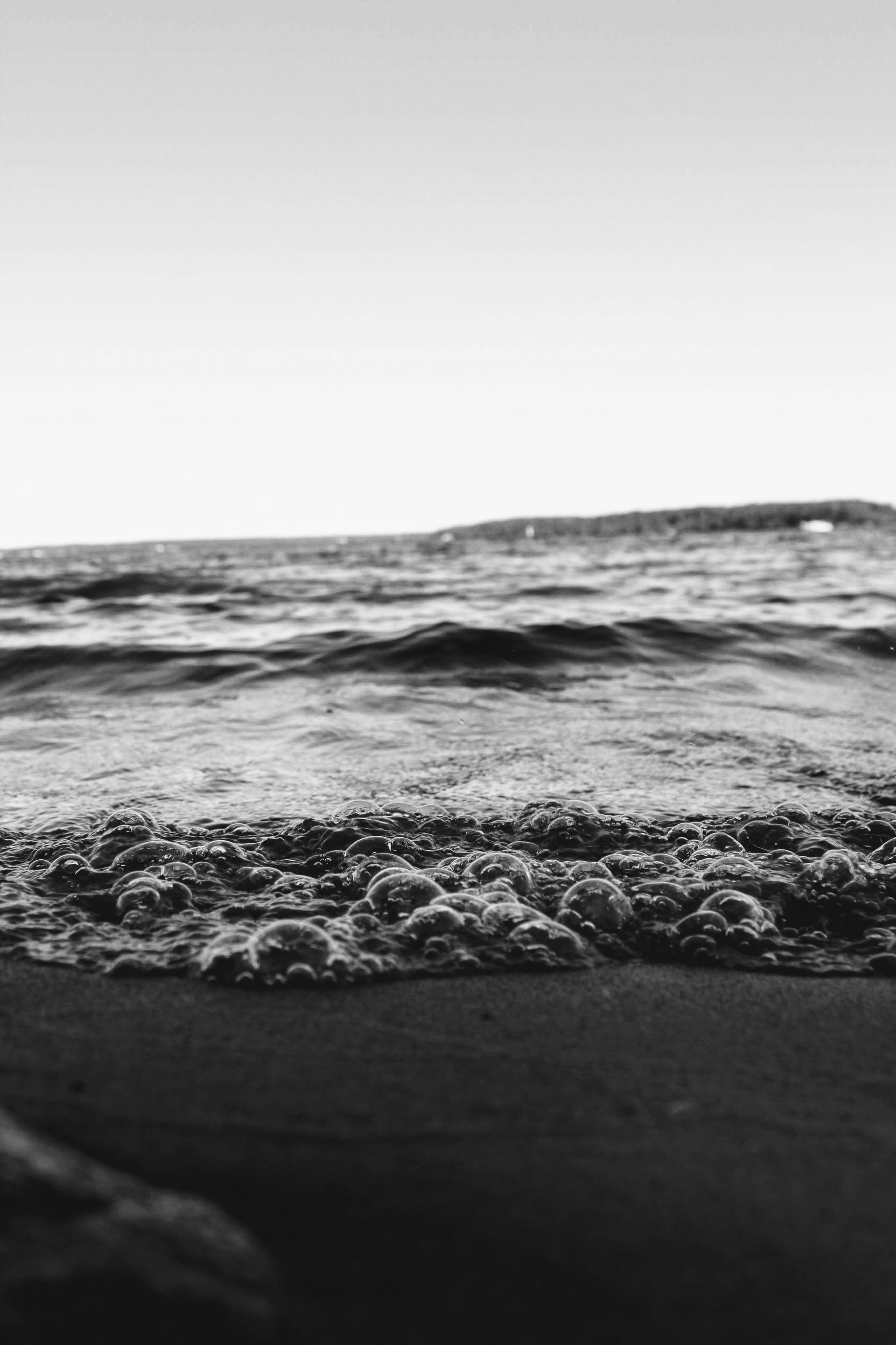 seashore in closeup photography