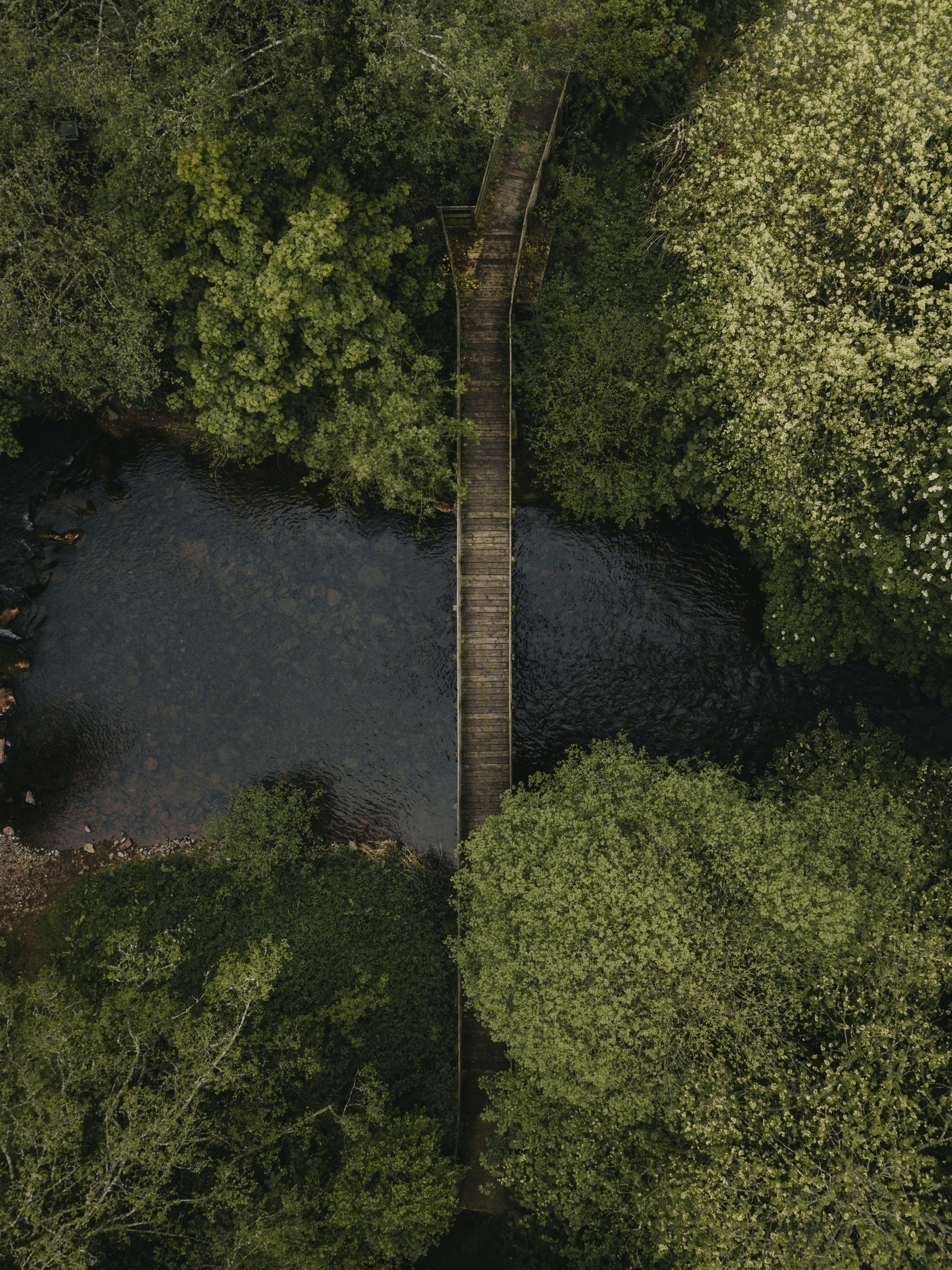 aerial view of brown wooden bridge above a river