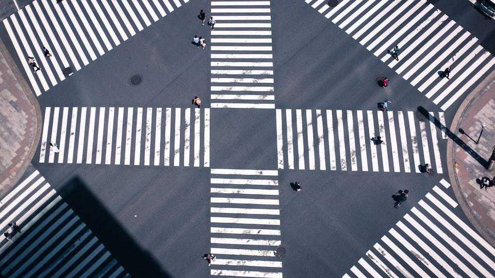 group of people walking on a pedetrian crossing