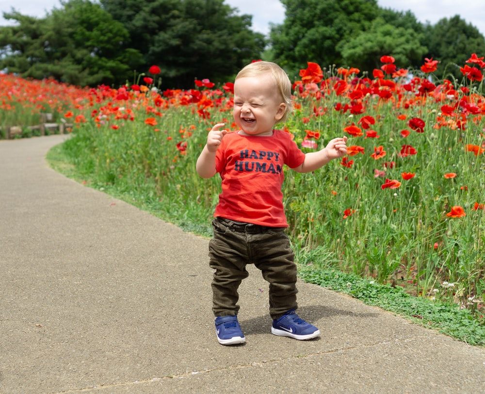 toddler laughing while standing near red petaled flowers
