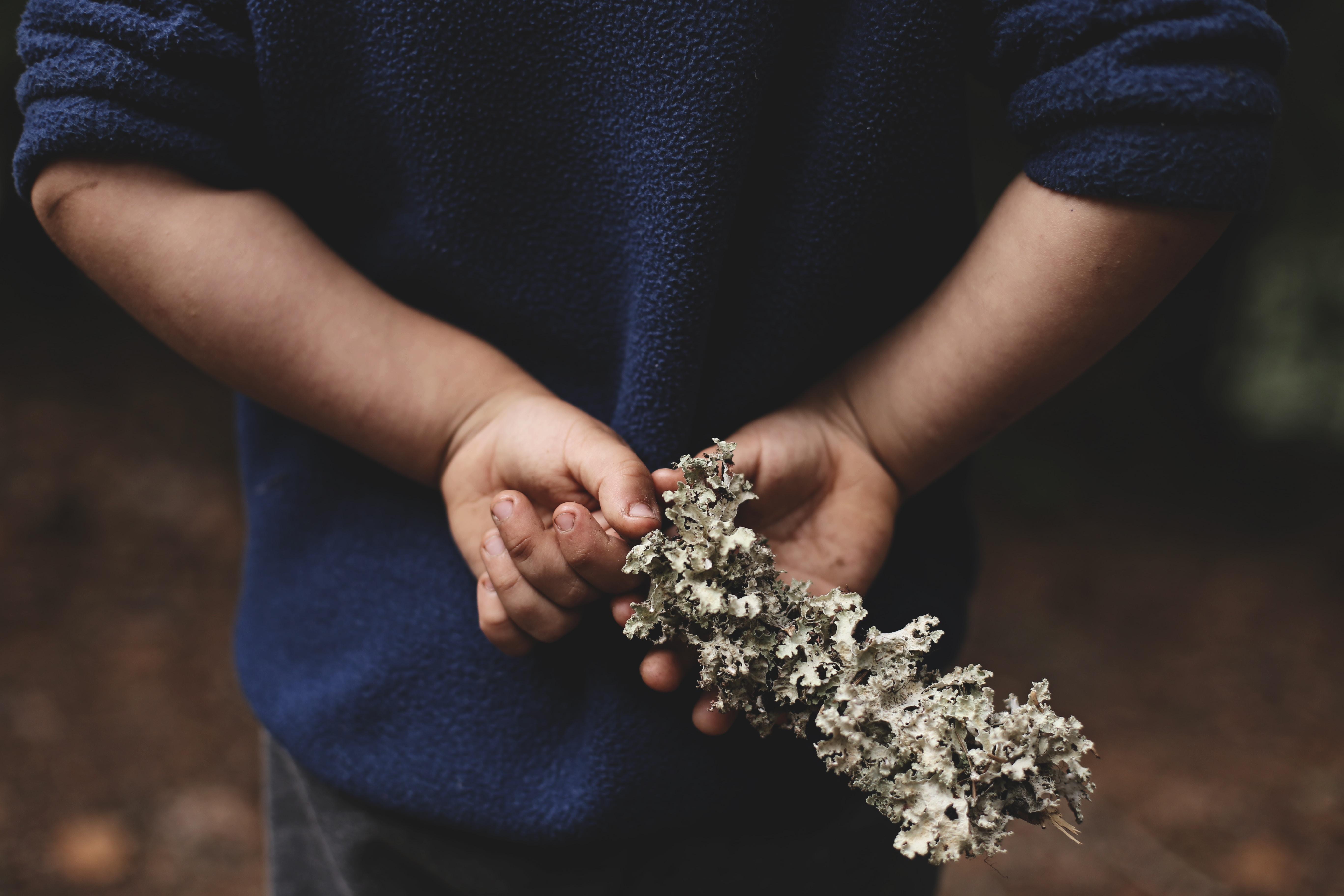 person holding white stone