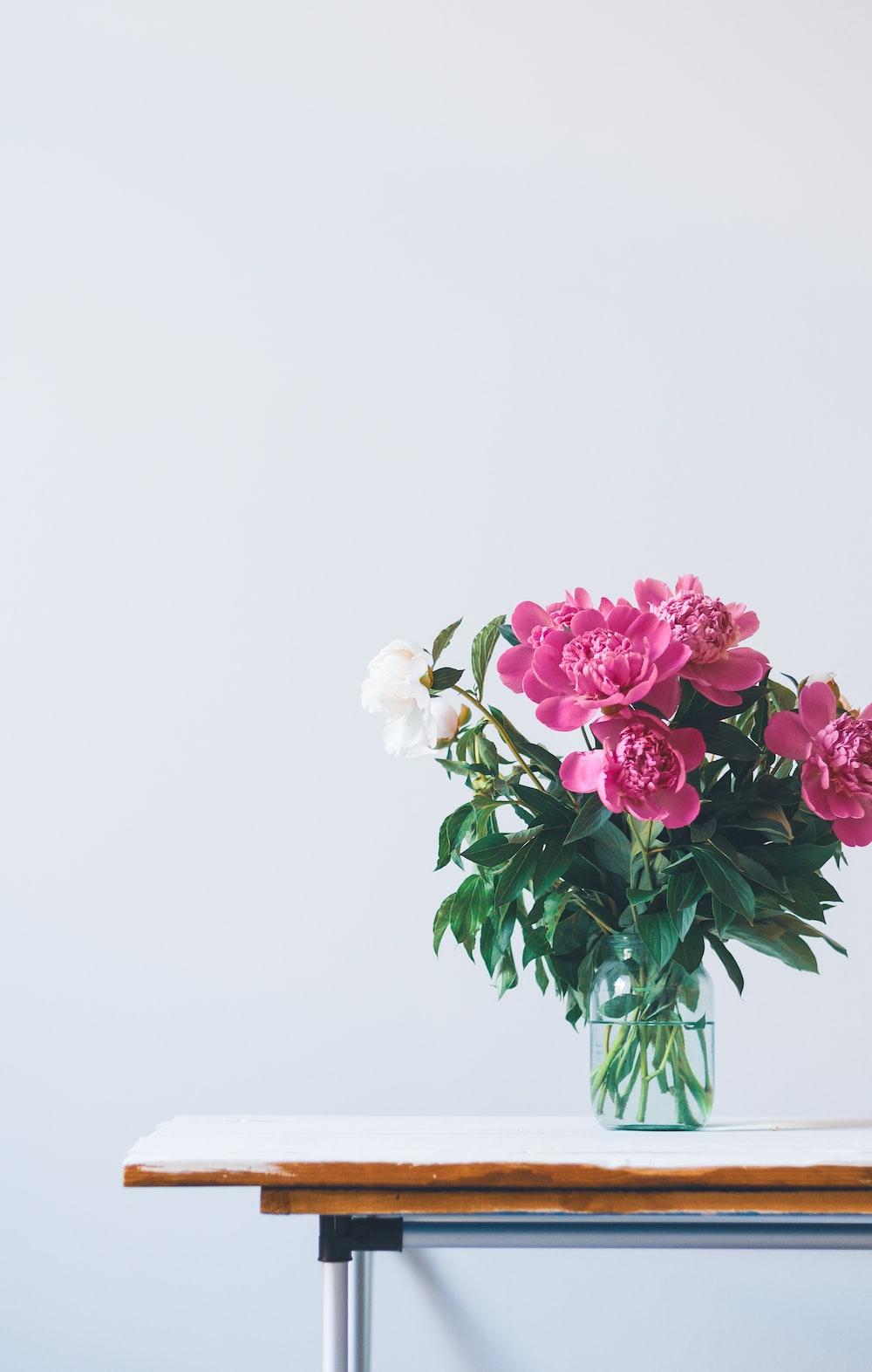 500+ Bouquet Pictures   Download Free Images on Unsplash