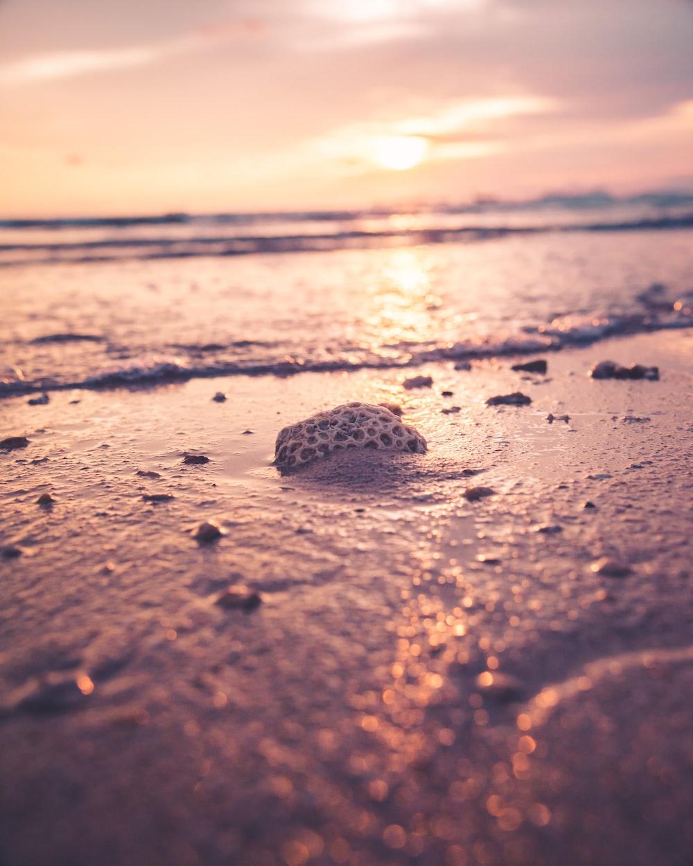 white rock on seashore