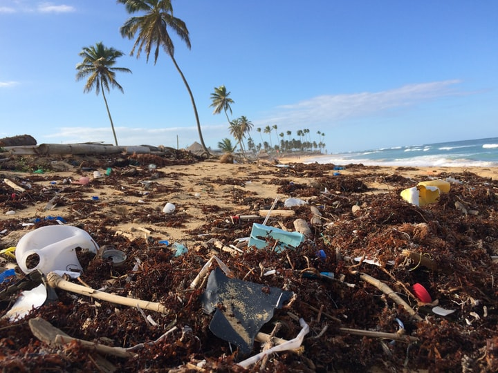 The world's biggest clean-ups