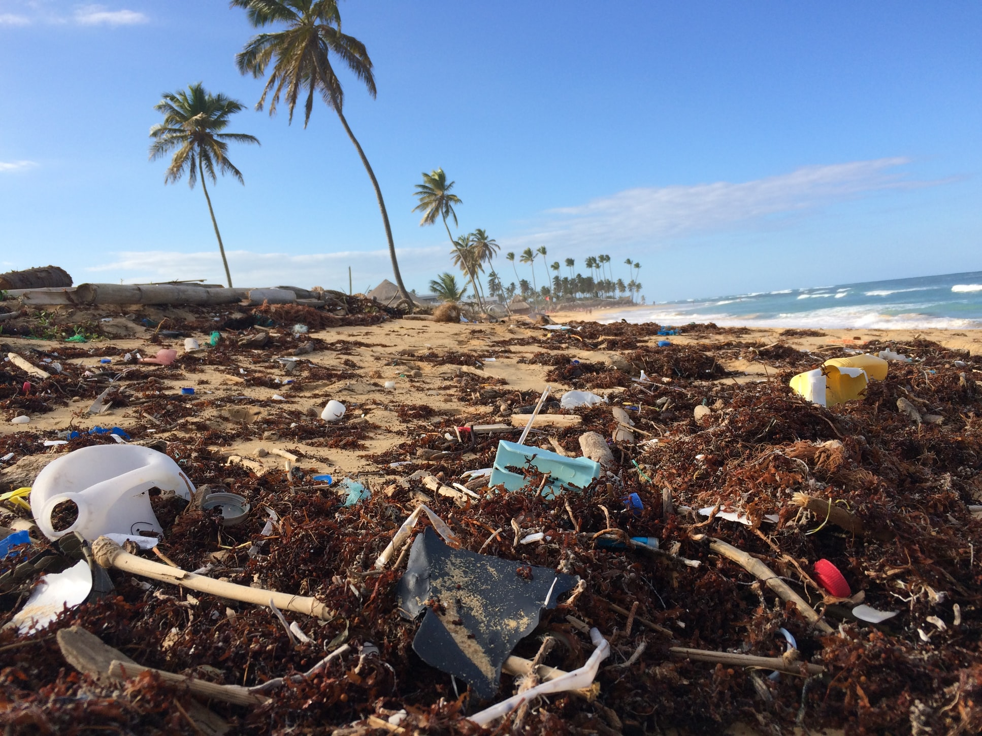A beach with plastic pollution and litter in the foreground, palm trees in the distance.