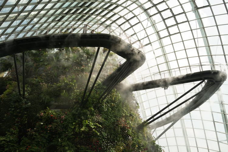 Gardens by the Bay, Singapore. Lush indoors gardens with misty humid air.