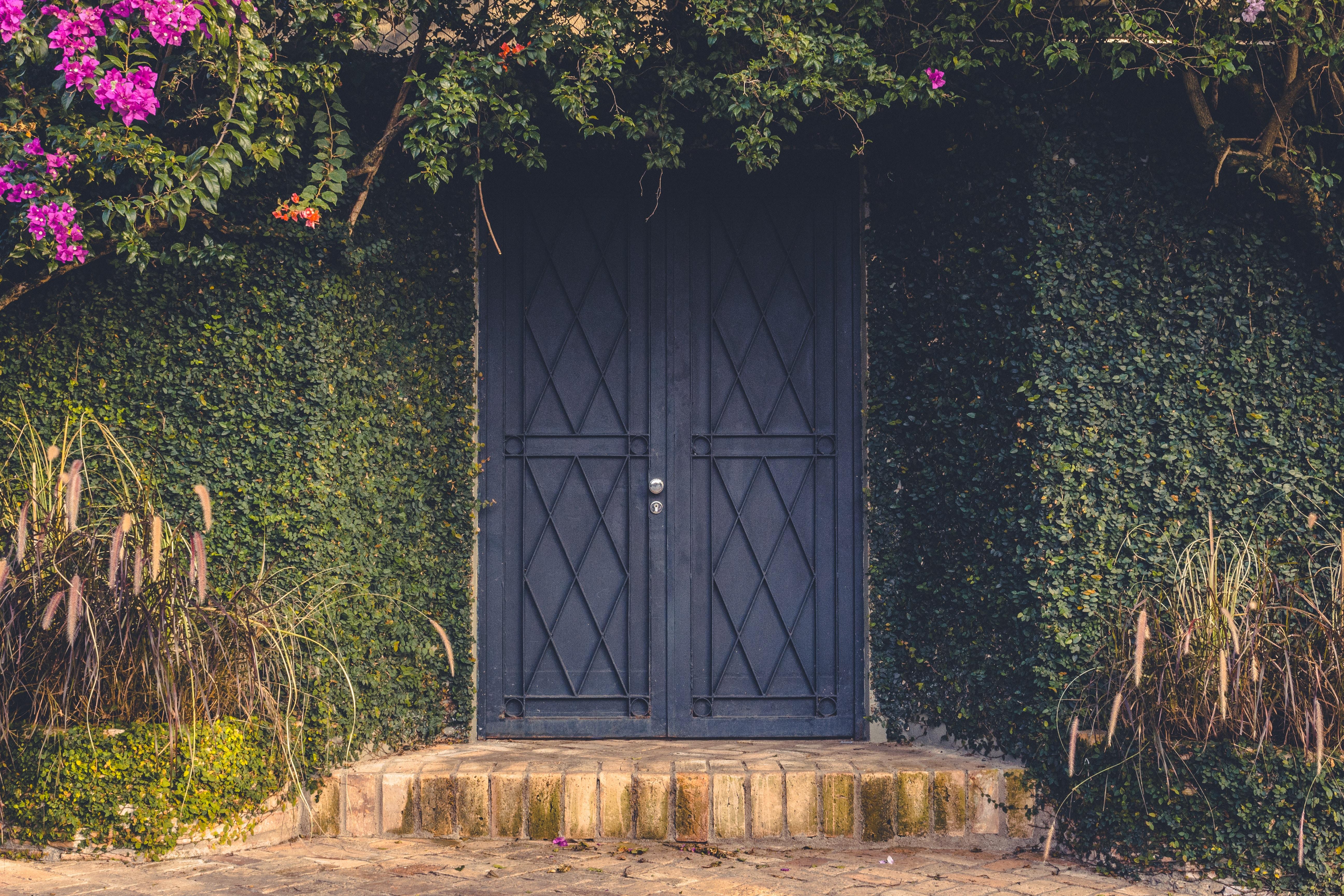 blue wooden door