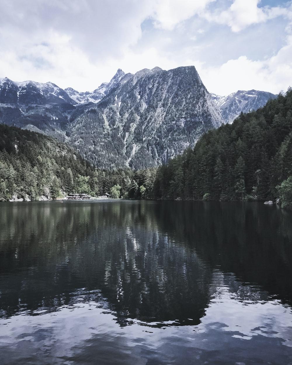 rippling body of water near trees