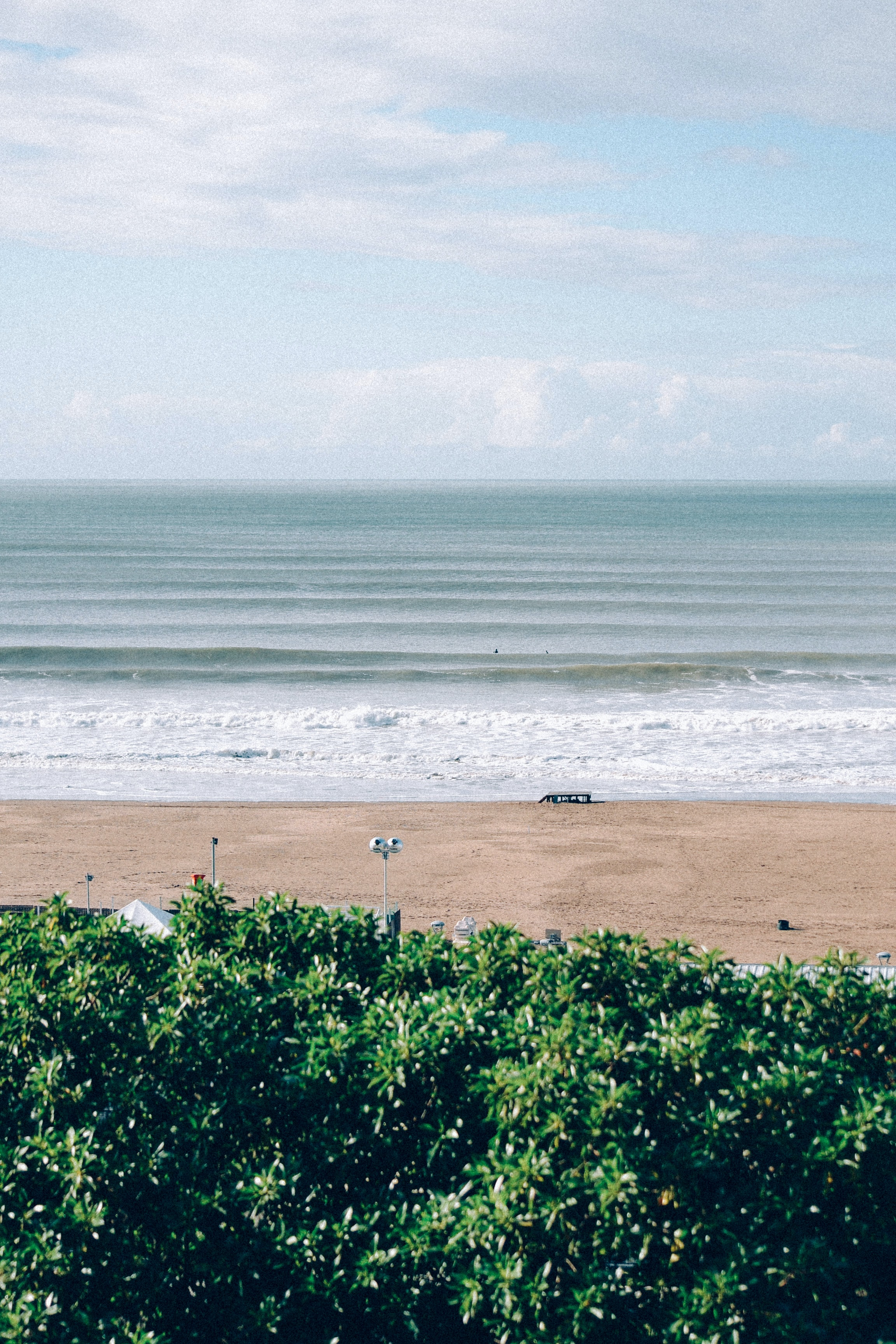 beach sand in front of ocean