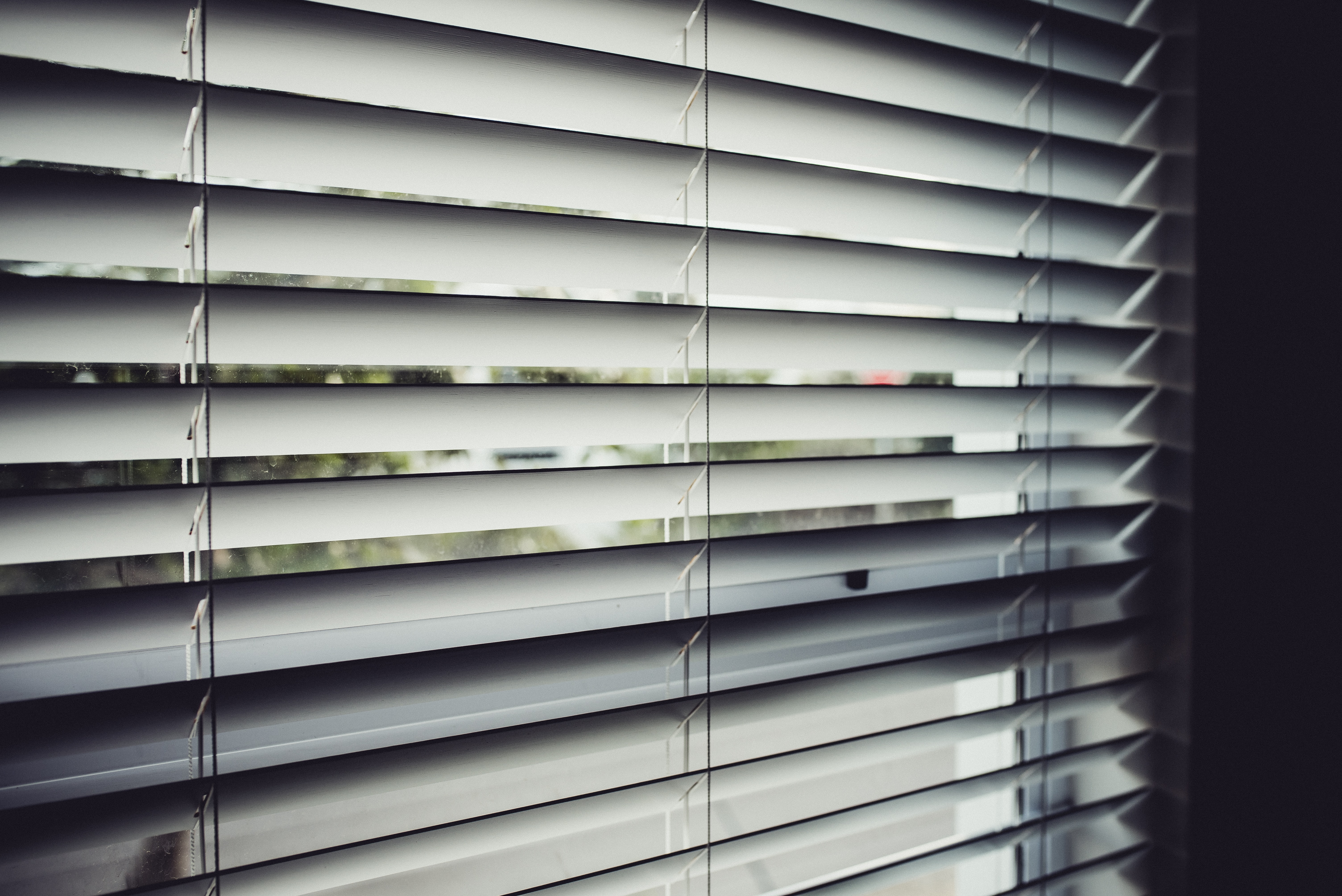 close view of white window blinds