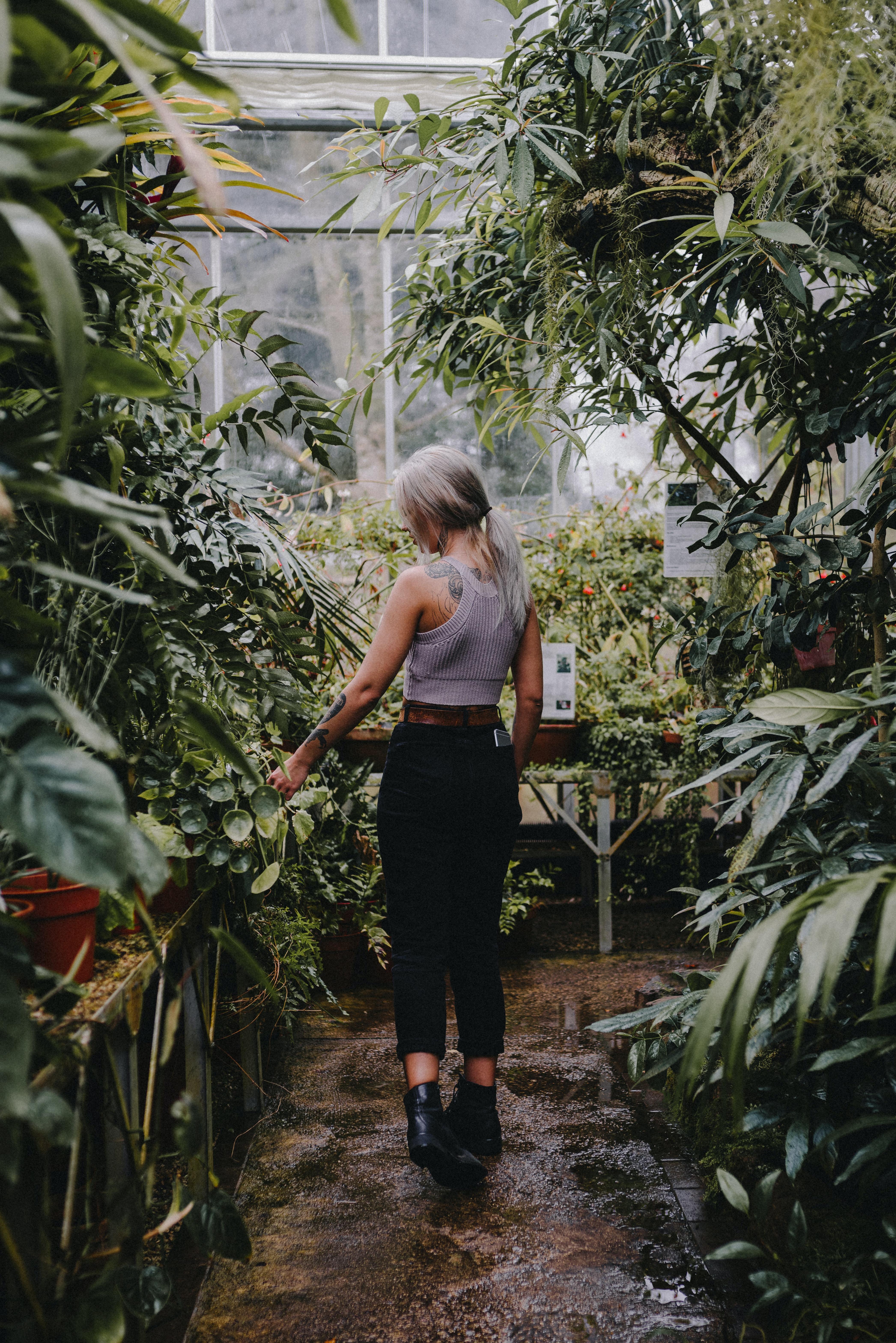 photo of man standing between plants