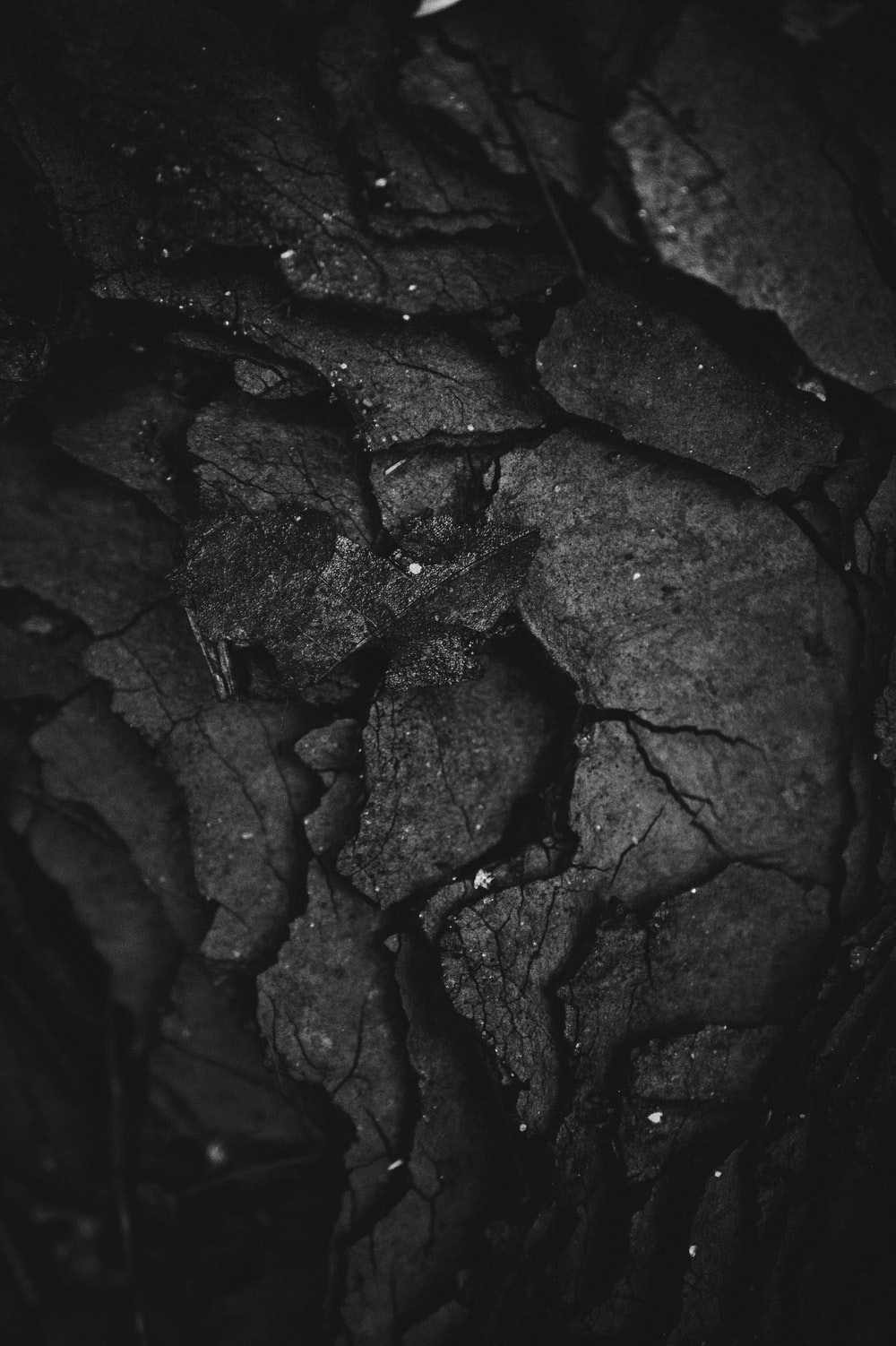 grayscale photography of rock formation