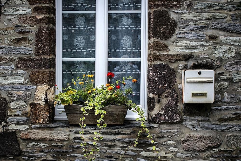 red poppy flowers on windowsill beside mailbox