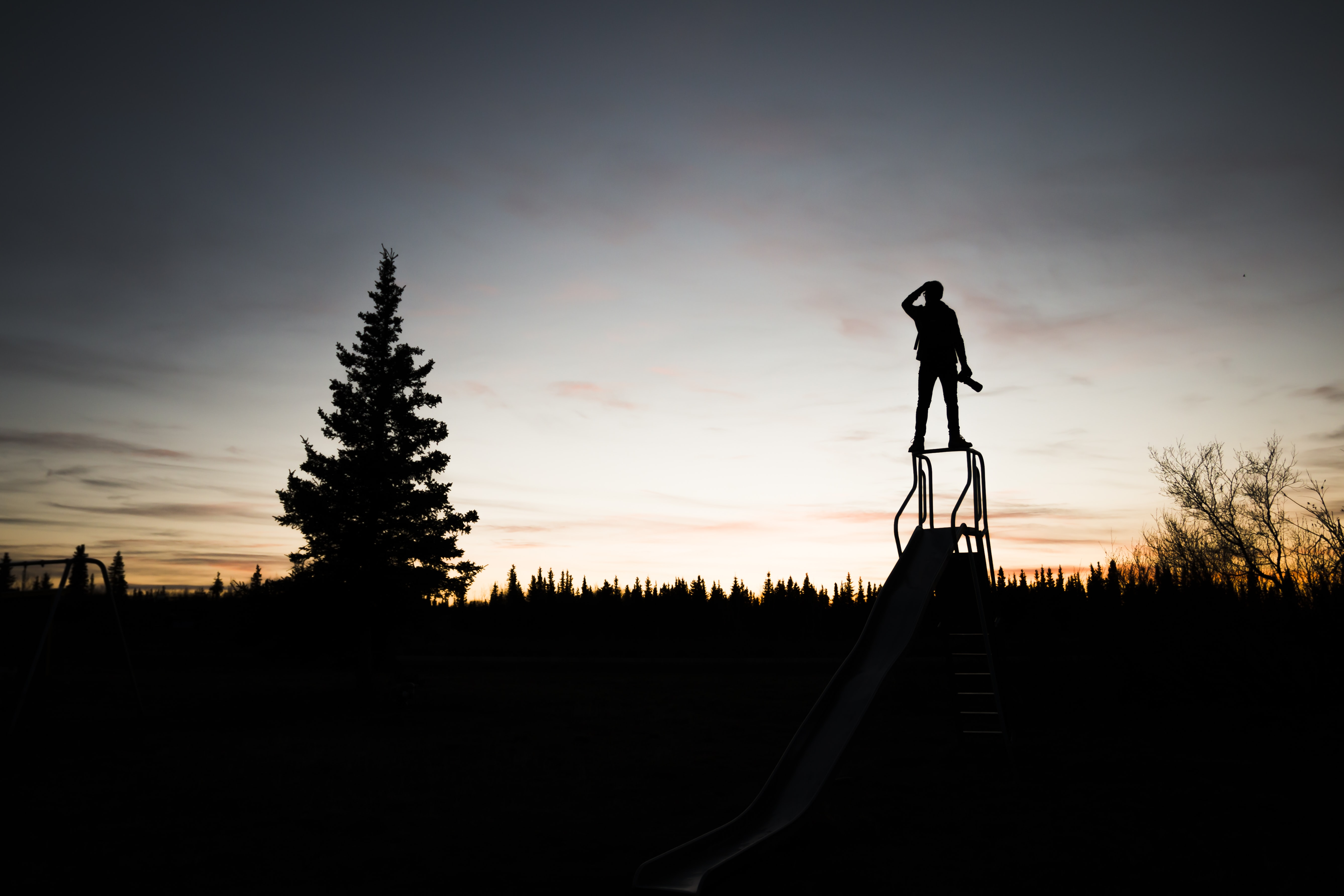 silhouette of a person standing on frame near tree during sunset