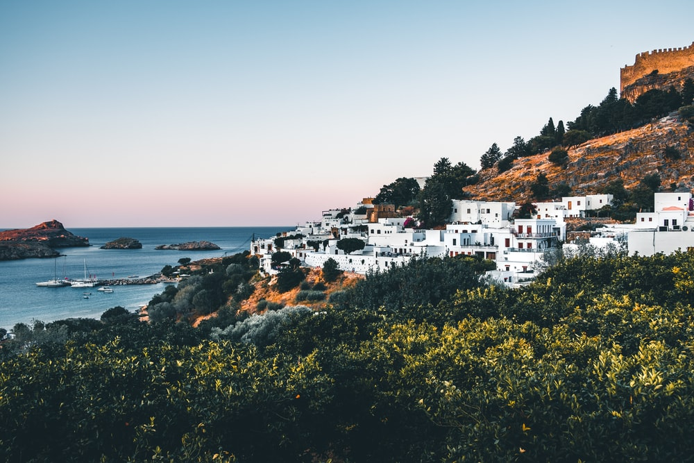 white buildings on mountain by the sea during daytime