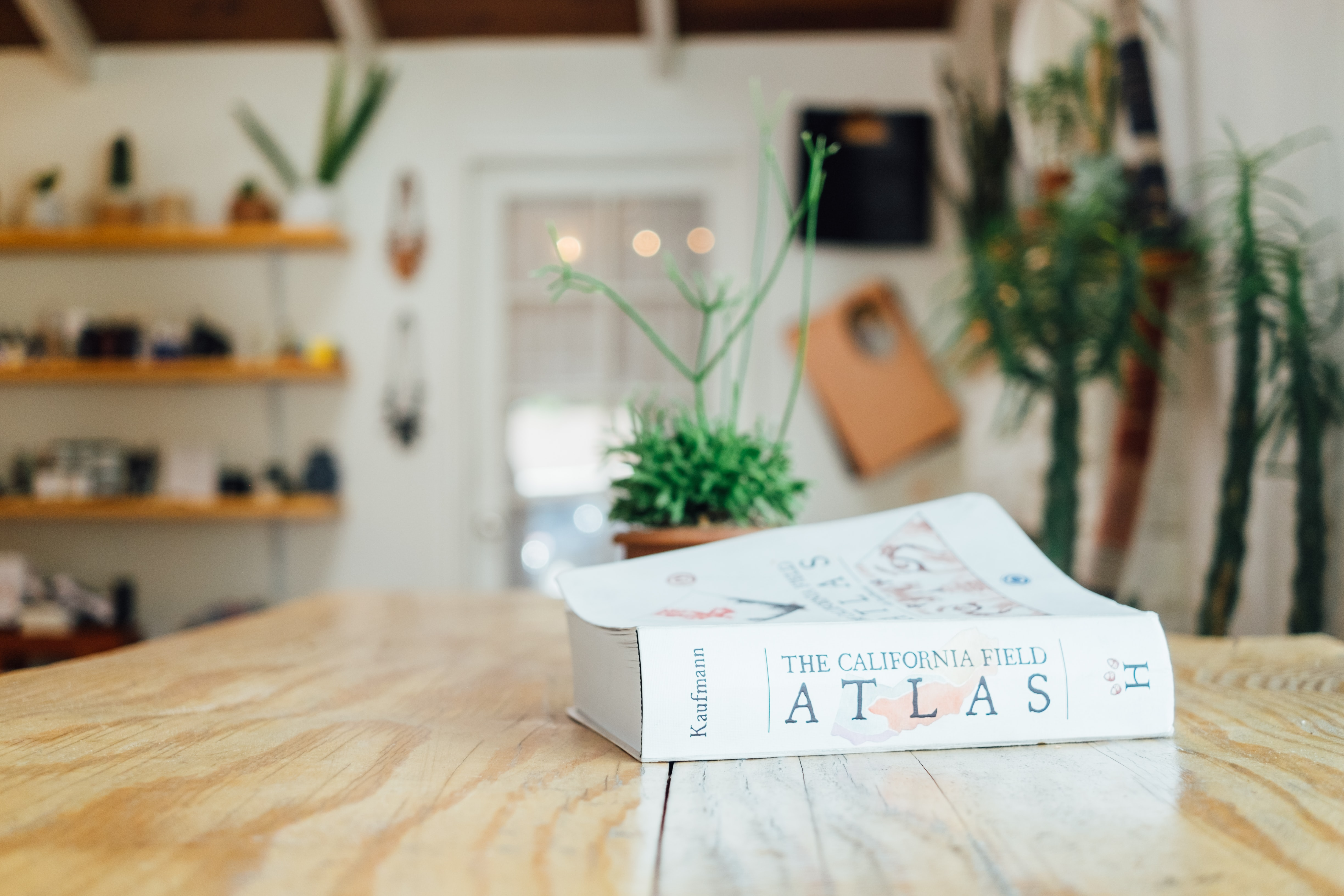 Atlas book on table surface