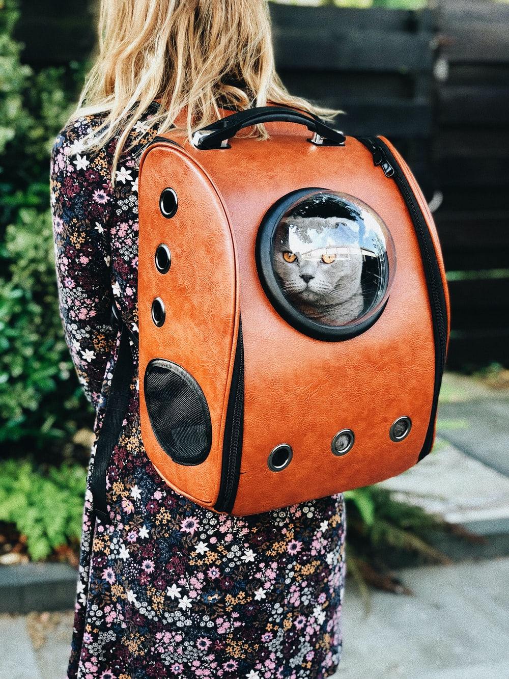 woman carrying pet carrier while standing near green plant
