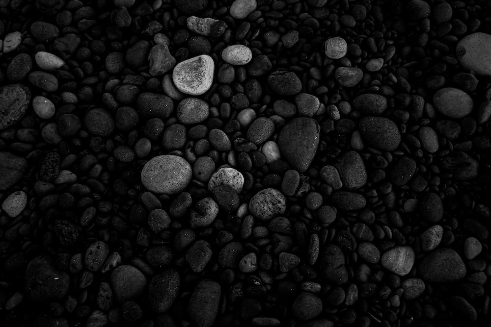 grayscale photo of pebbles