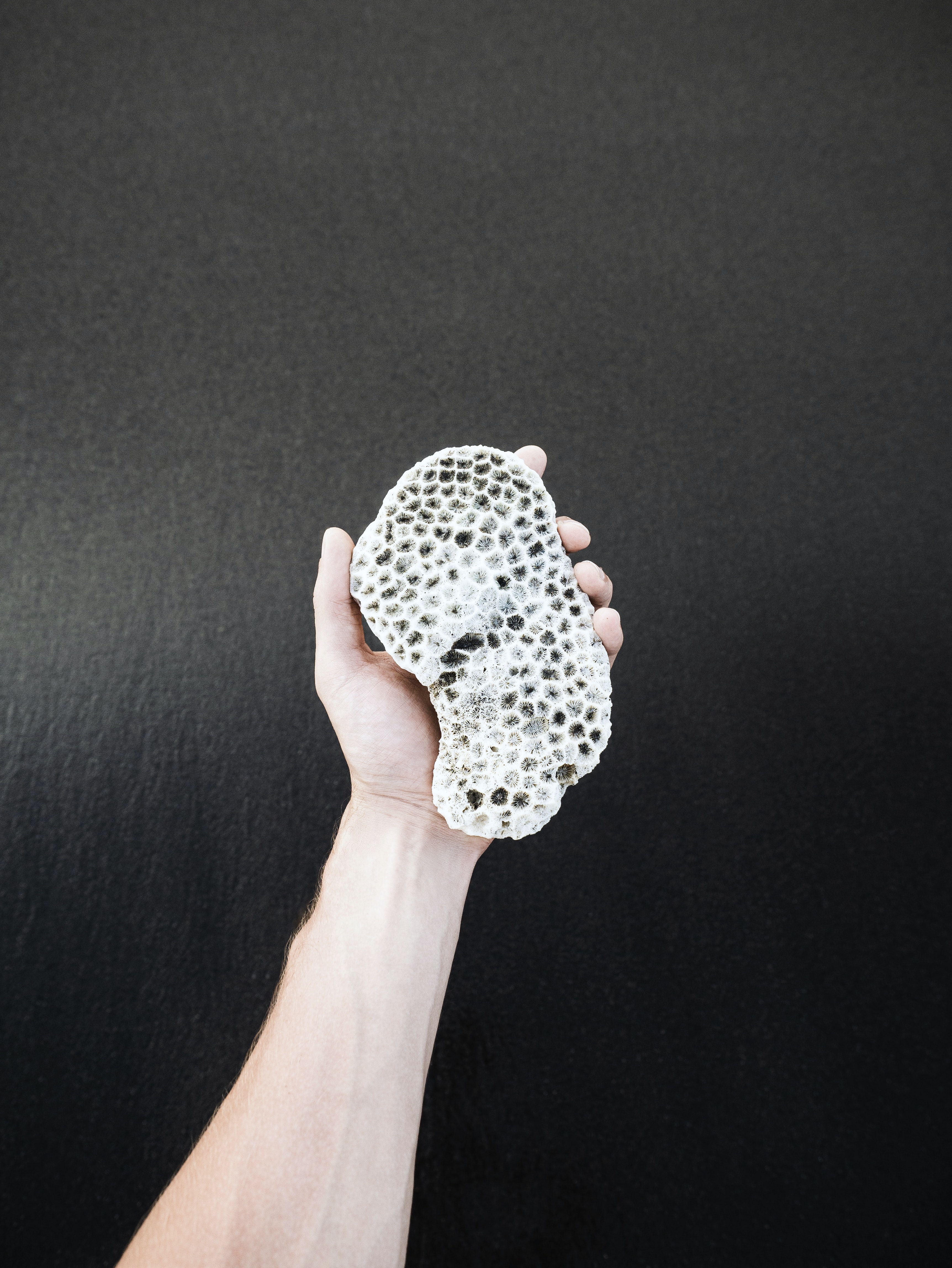 person's hand holding white stone
