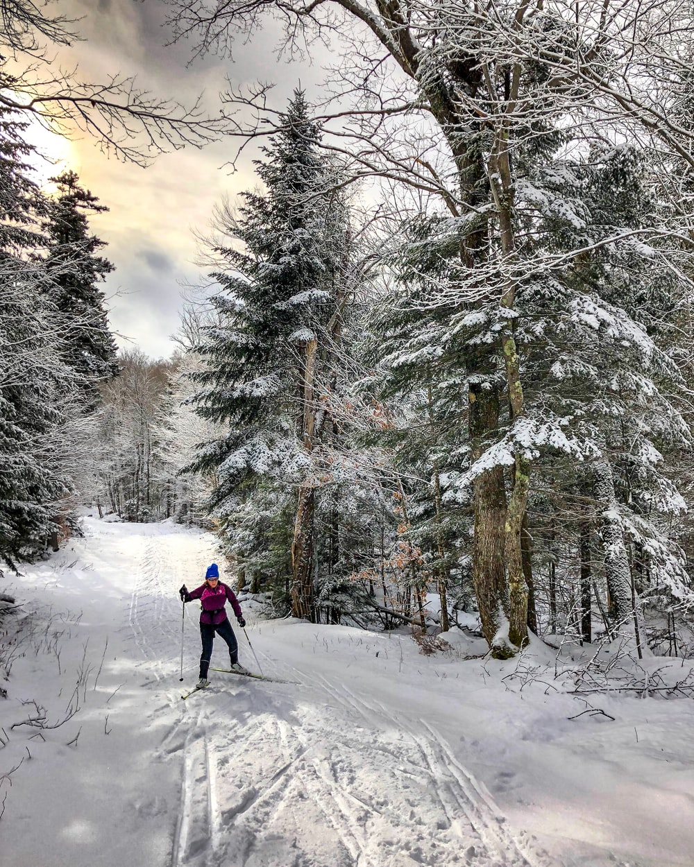 person skiing near trees under white clouds during daytime