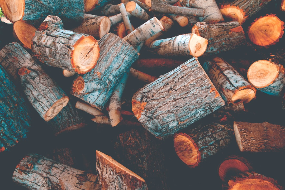 This photo was taken after the winter firewood was fresh-cut at Oklahoma Academy.