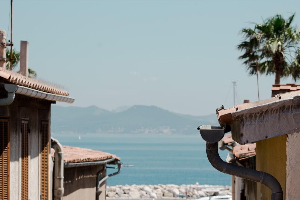 houses near ocean during daytime