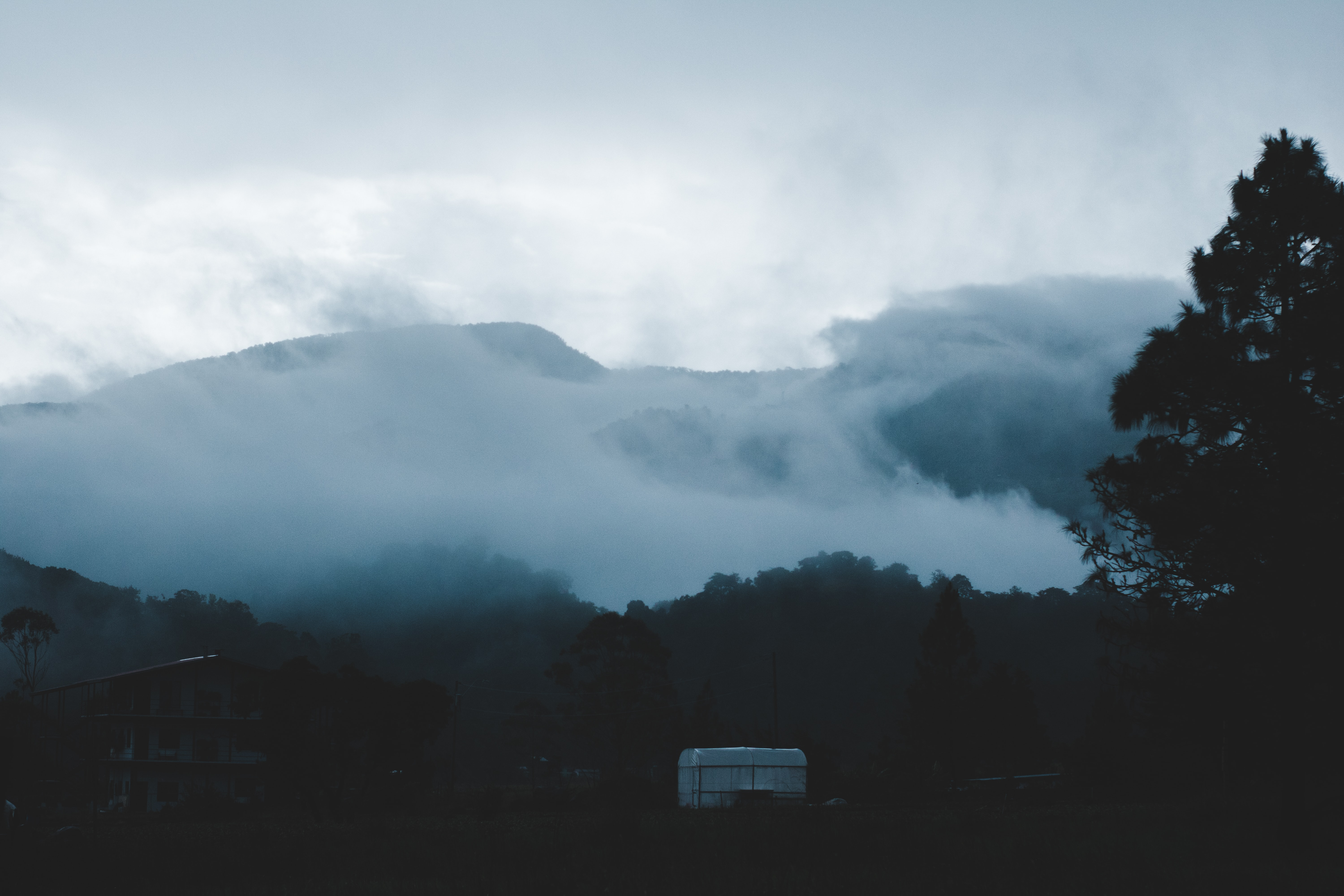 mountain covered with fog during daytime