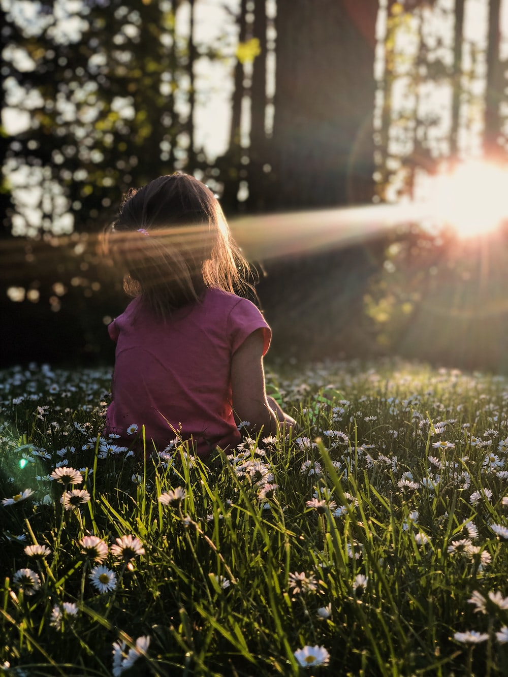 girl sitting on daisy flowerbed in forest