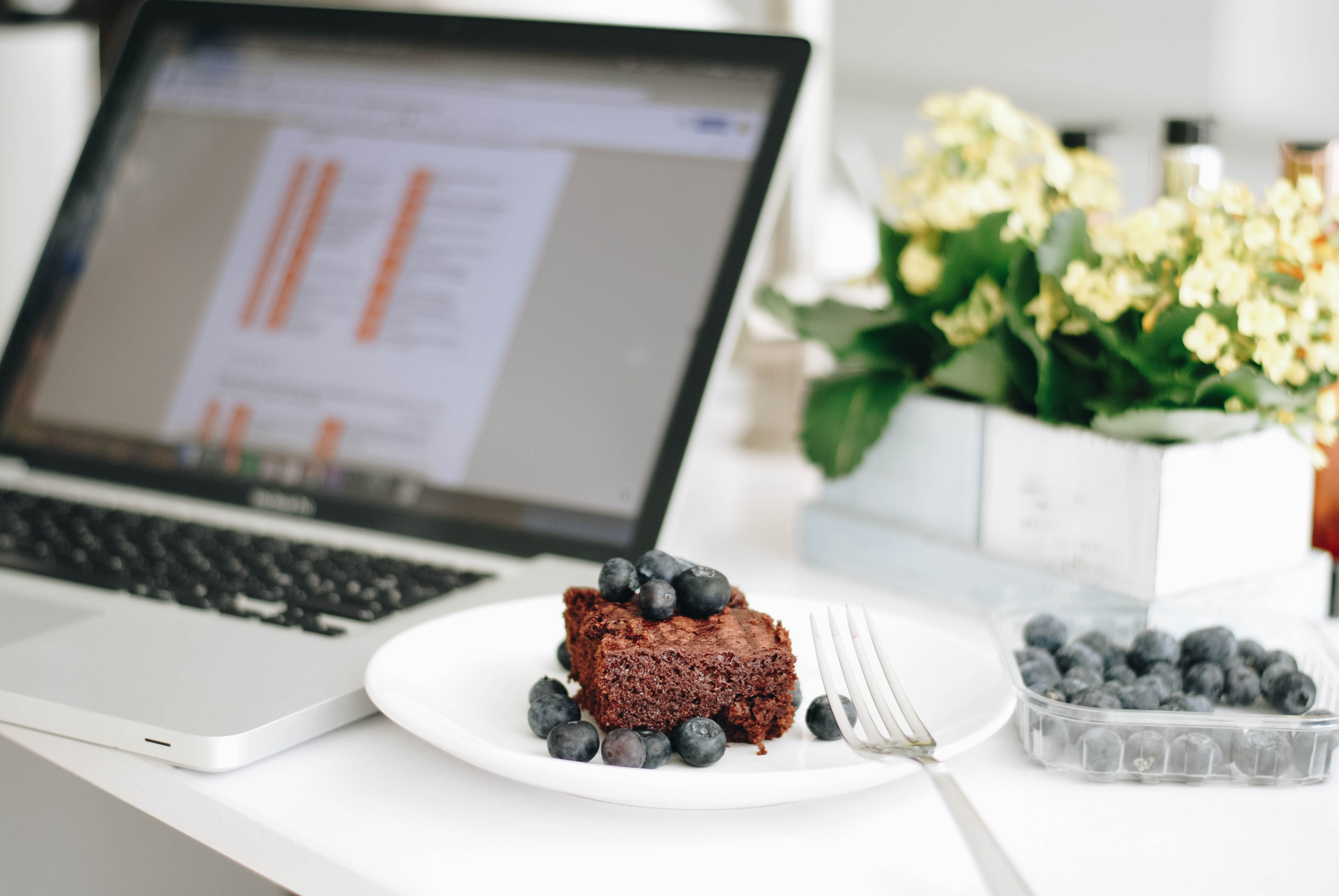 chocolate cake with berry fruit garnish