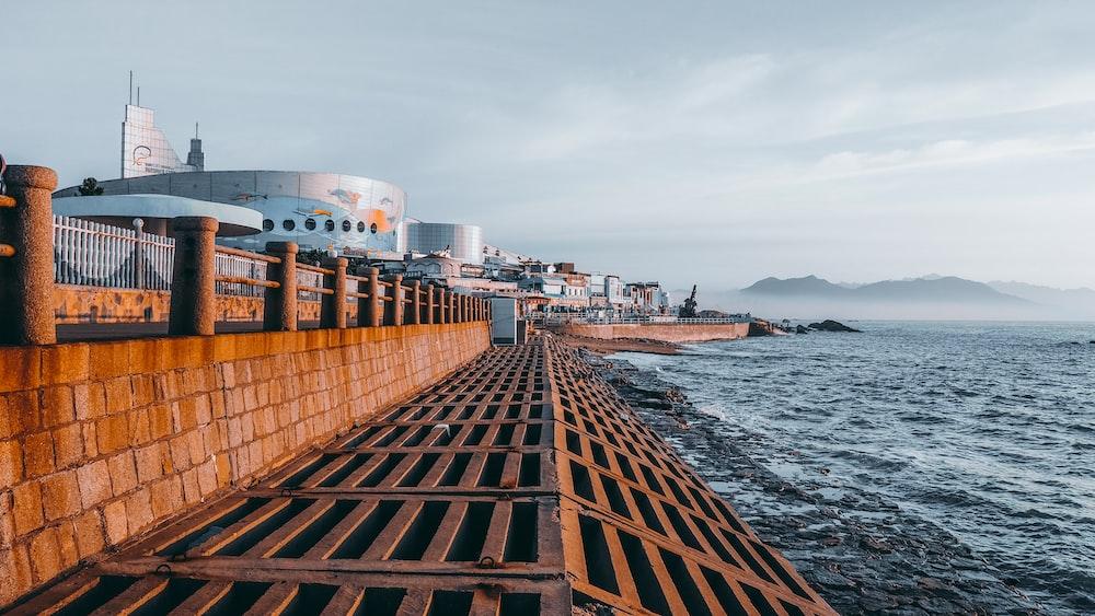 sea line near ocean