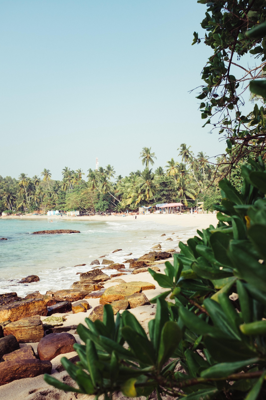 body of water beside shoreline