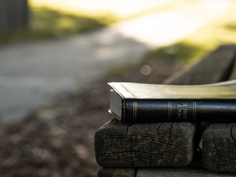 Holy Bible on black wooden bench