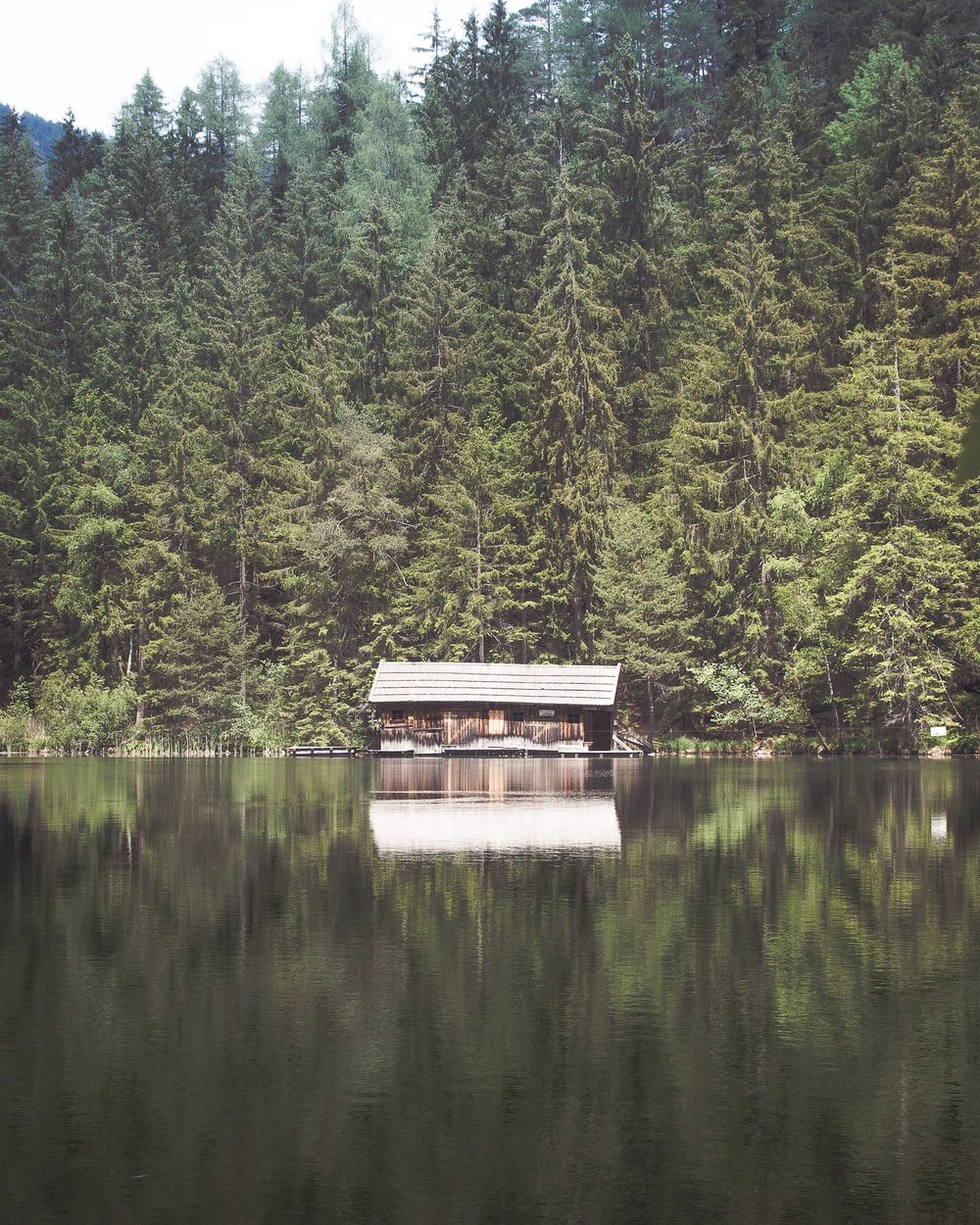landscape photography of shed near body of water and trees