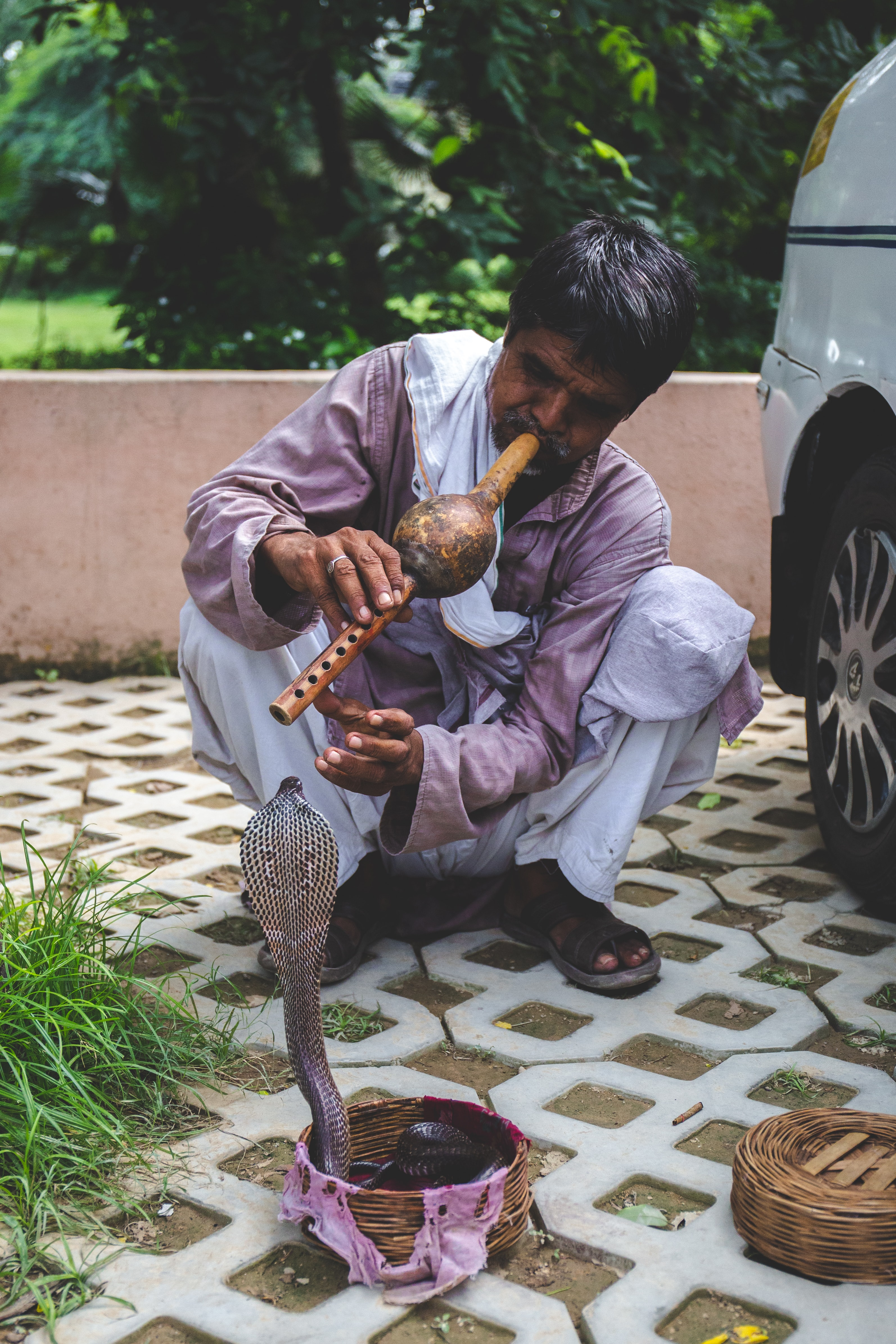 man playing flute in front of king cobra