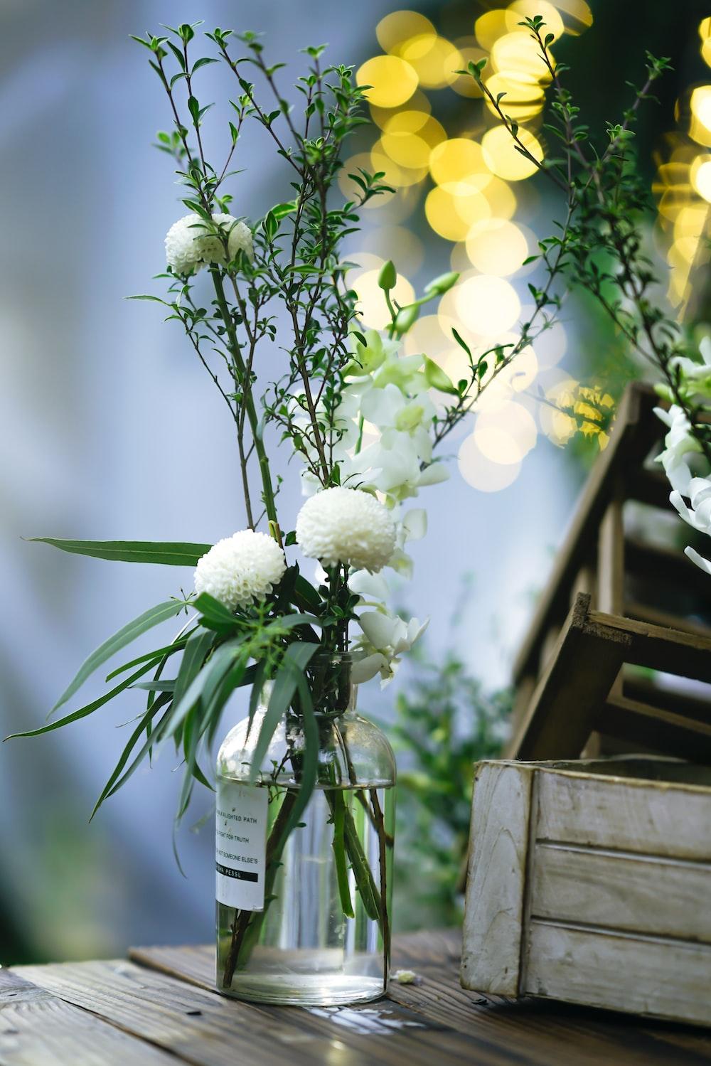 white petaled flowers centerpiece