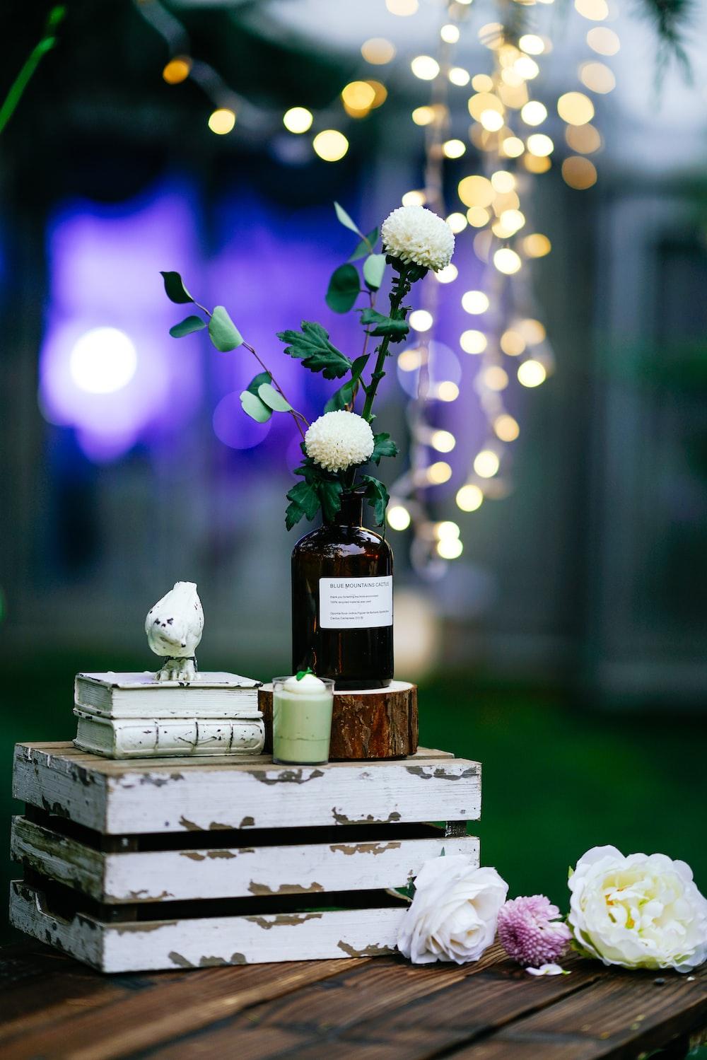 white petaled flower on box