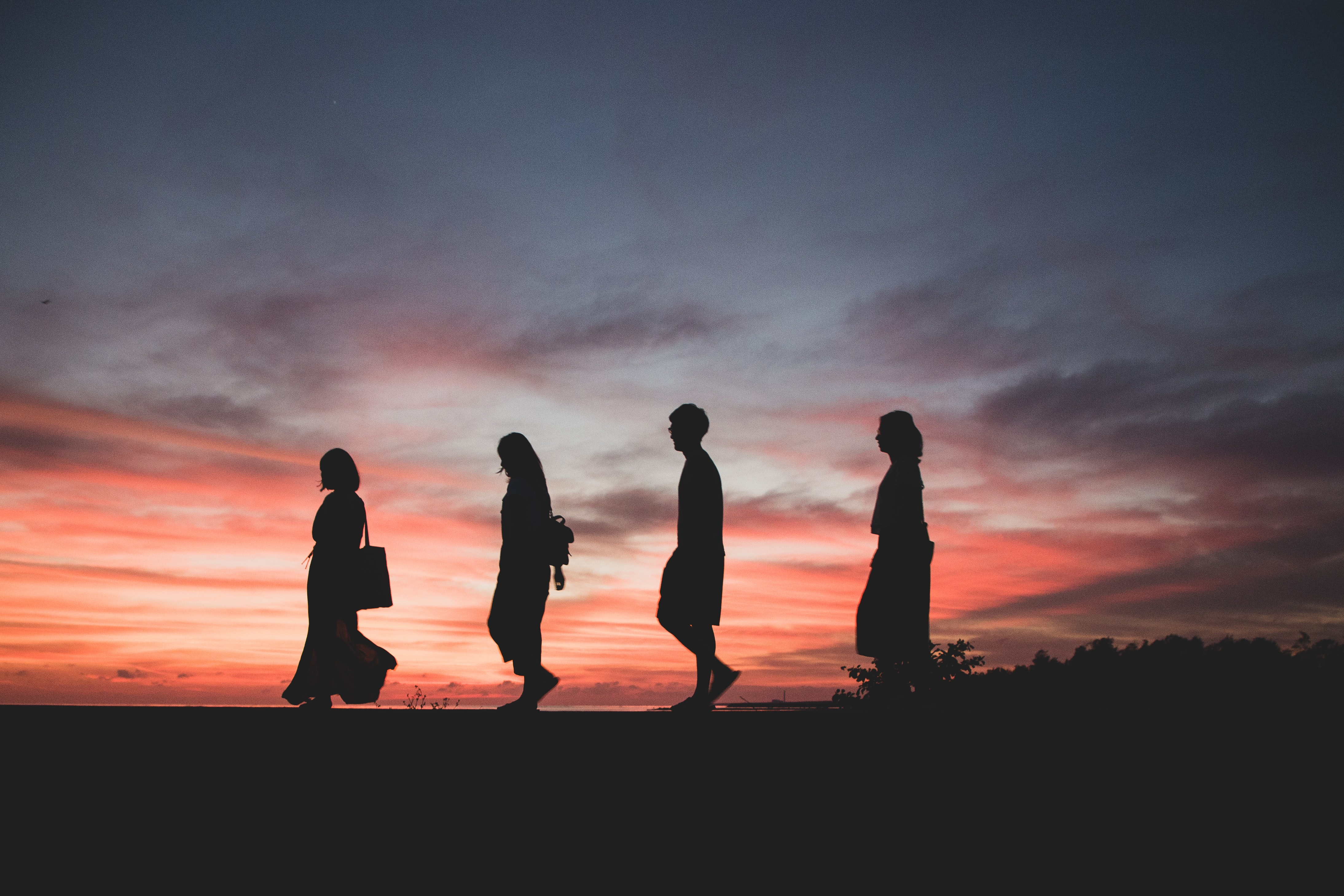 silhouette of four person walking on ground
