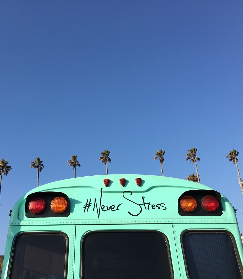 low-angle view of blue bus near coconut palm trees