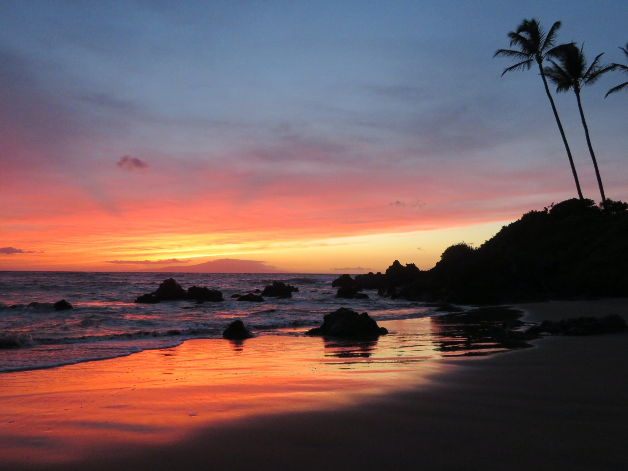 seashore under sunset