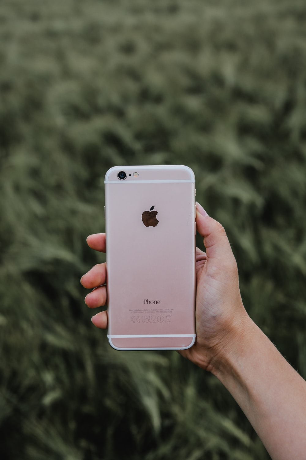 person holding rose gold iPhone 6s