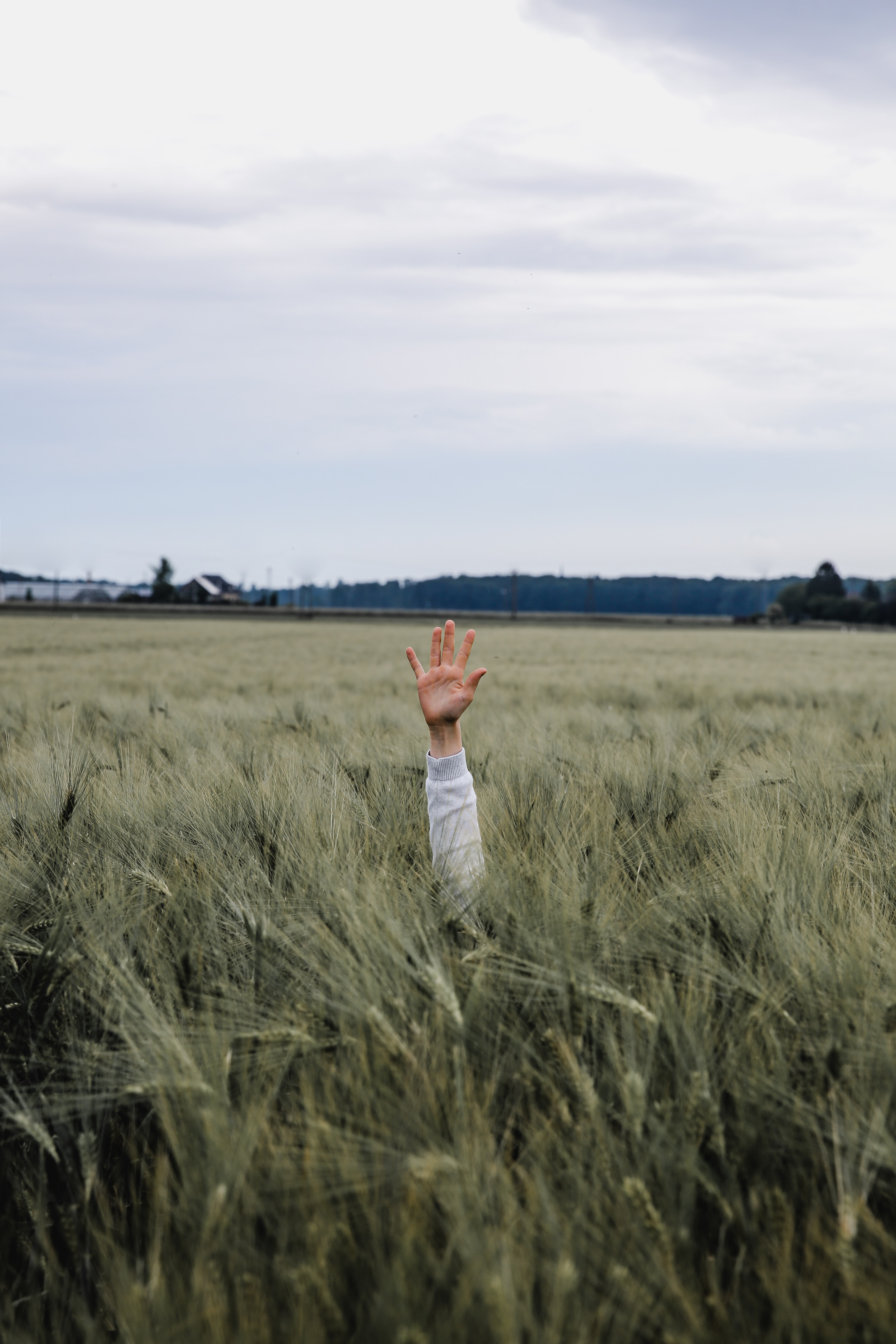 person hand on grass land